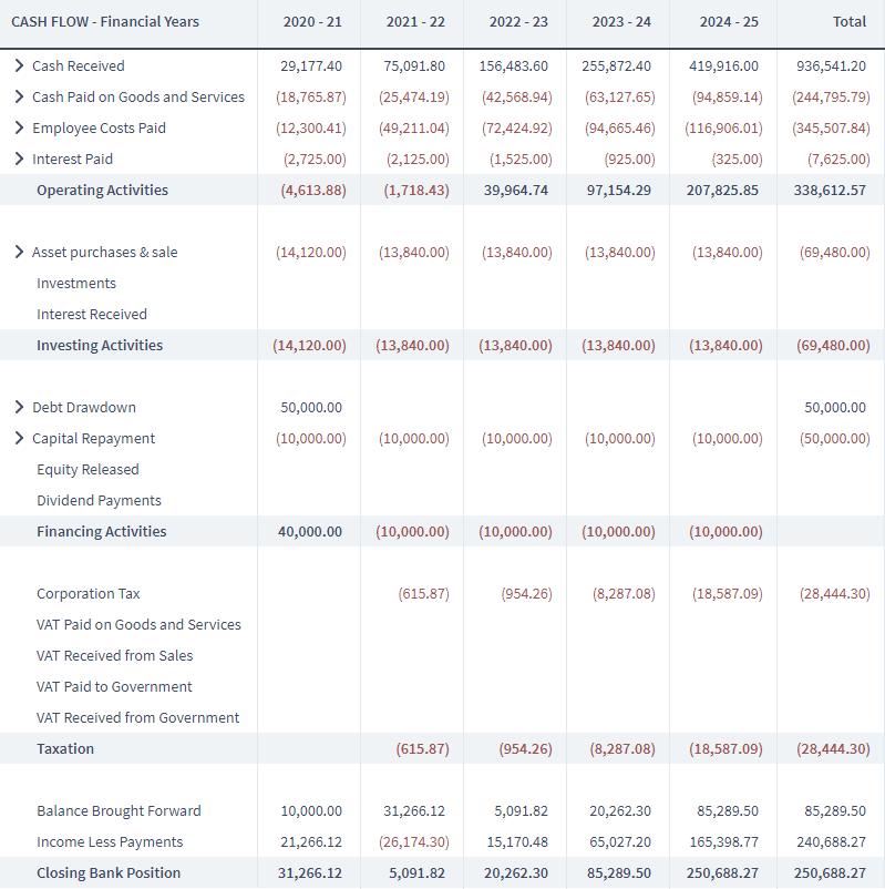 screenshot of a cash flow spreadsheet. screenshot of Brixx Software for business plan blog post